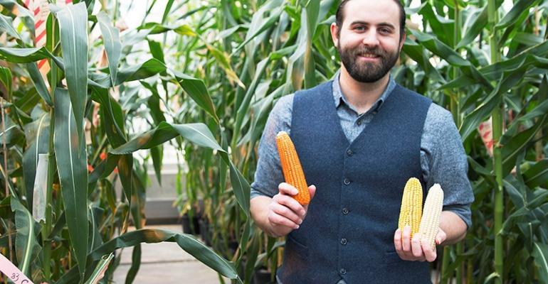 orange corn held by Evan Rocheford, CEO of NutraMaize LLC