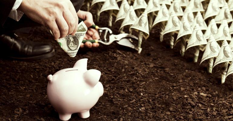 piggybank in field of dollar bills_FDS_Aluxum_iStock_Getty Images-185248185.jpg