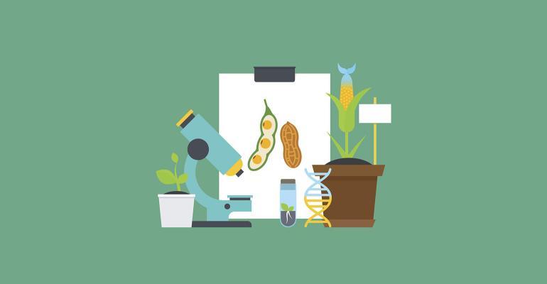 plant science and microscope cartoon