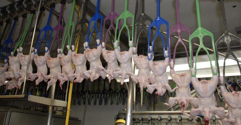 poultry inspection-USDA photo.jpg