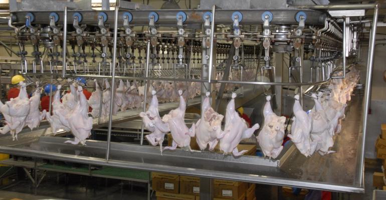 poultry-inspection-USDA-AliceWelsh.jpg