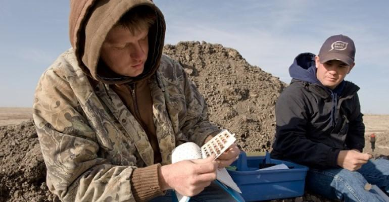 classifying soils in the field