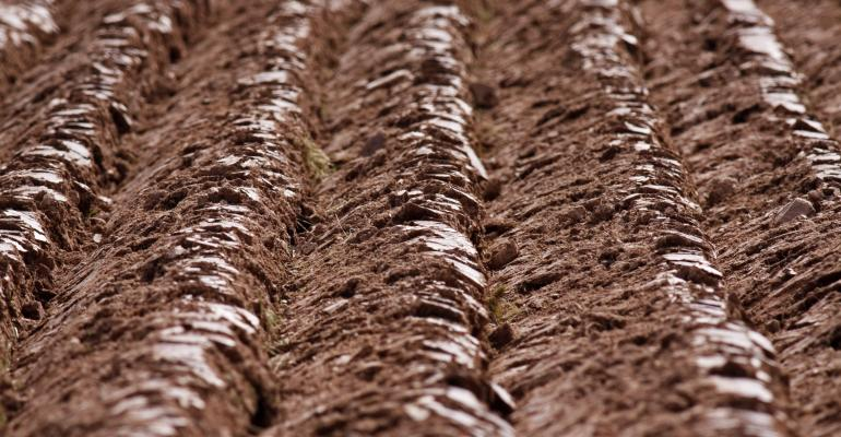 soil furrows