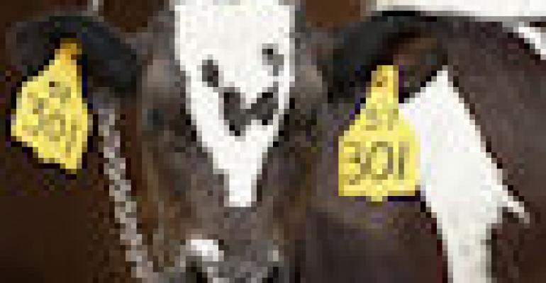 RFID animal tag requirements challenged in court