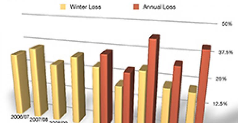 Bee survey: higher summer losses push up total losses