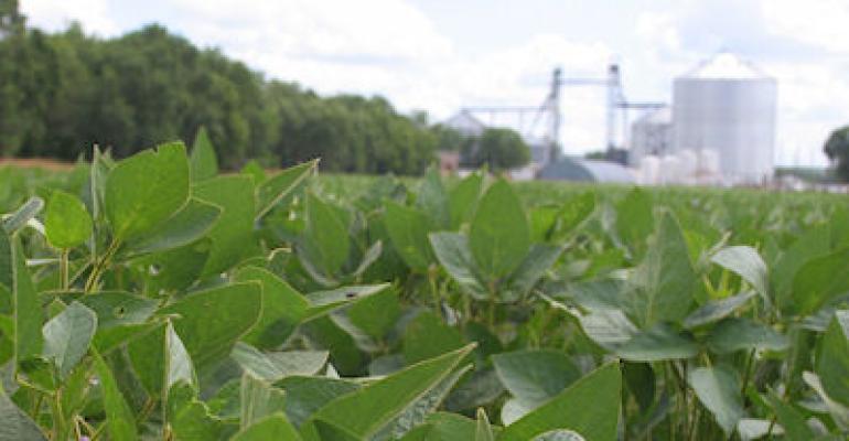 Viserion Grain to acquire 11 grain elevators