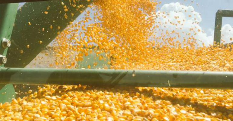 USDA crop progress: Corn harvest limps along