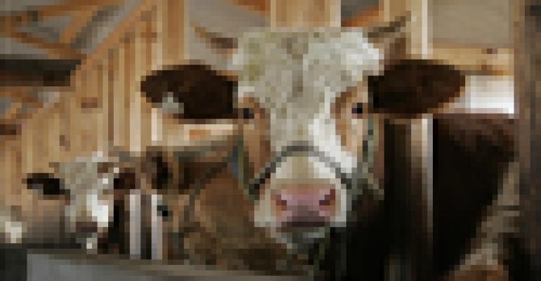 Livestock sector has high emission mitigation potential