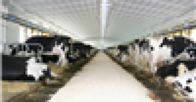 Low-flow sprinklers may cool dairy cows