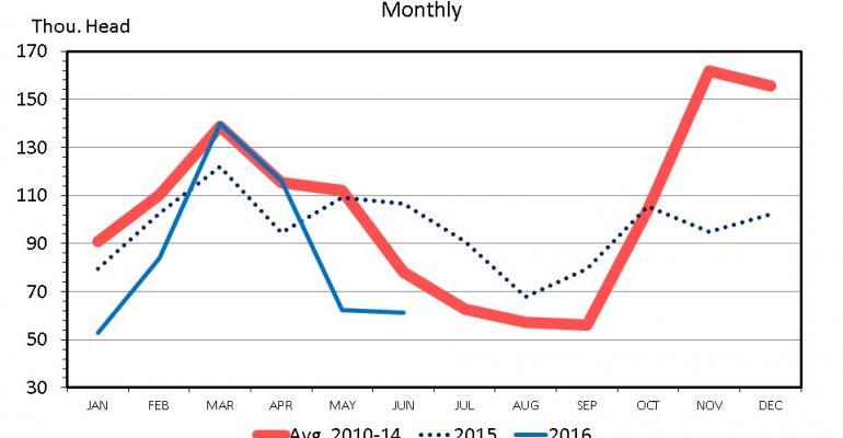 LIVESTOCK MARKETS: Live feeder cattle imports decrease
