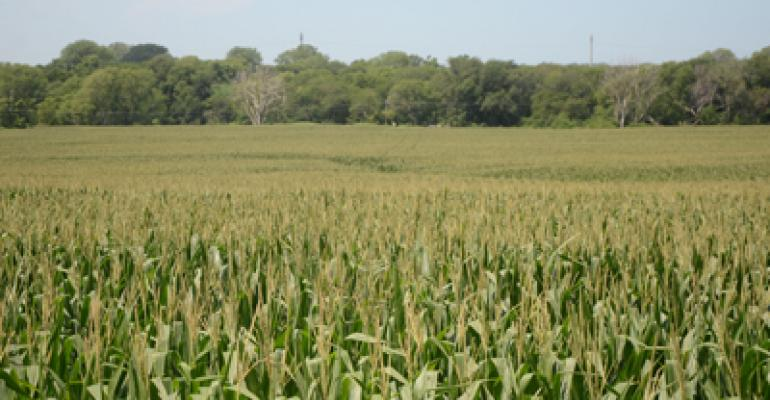 USDA crop progress: Corn quality picks up a point