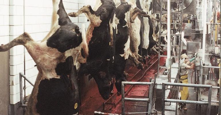 USDA sued for not preventing inhumane slaughter