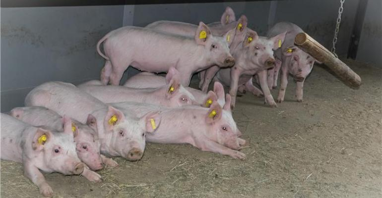 Earth-air heat exchanger best to protect farm animals against heat stress.