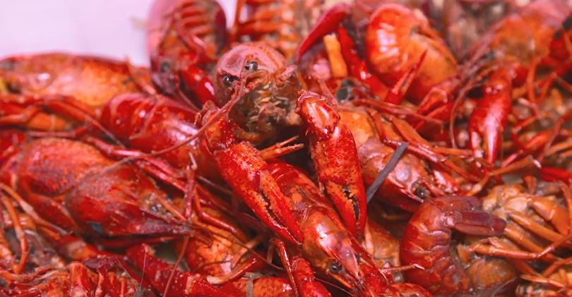 This Week in Agribusiness - Louisiana crawfish harvest