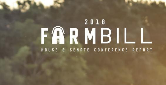 2018 farm bill graphic.jpg
