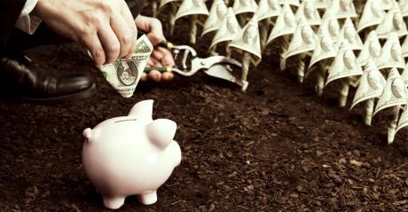 FPS piggy bank in field of dollar bills_FDS_Aluxum_iStock_Getty Images-1540x800.jpg