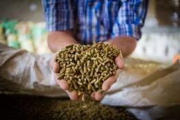 livestock feed pellets_DewaldKirsten_iStock_Getty Images-914759392.jpg
