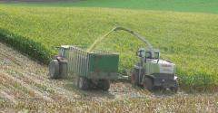 IBC silageproduction.jpg