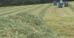 cutting grass for silage_Ingram Publishing-122535984.jpg