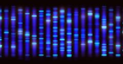genomics DNA sequencing biotechnology Sanger sequencing_ktsimage_iStockThinkstock-536688016.jpg