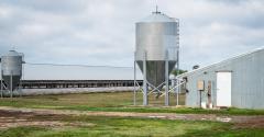 hog farm buildings_Darwin Brandis_iStock_Getty Images-951798010.jpg