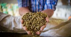 livestock feed pellets_DewaldKirsten_iStock_Getty Images-914759392.jpg