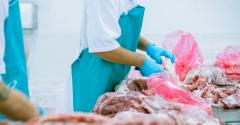 meat processing slaughter inspection