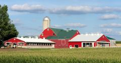red farm with corn field and dairy cows_FDS_SimplyCreativePhotography_iStock_Getty Images-507895407 copy.jpg