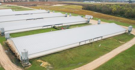 hog barns in North Carolina