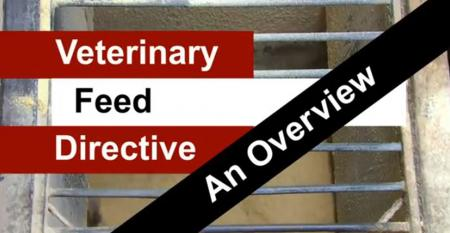 Veterinary-Feed-Directive-Overview